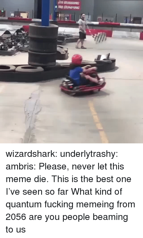 Fucking, Meme, and Tumblr: O RUBBING  NO BUMPING wizardshark:  underlytrashy:  ambris: Please, never let this meme die.  This is the best one I've seen so far   What kind of quantum fucking memeing from 2056 are you people beaming to us