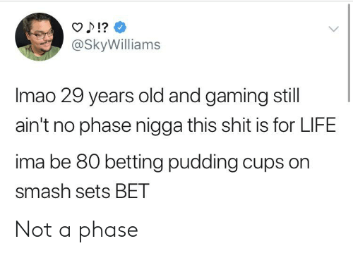 Blackpeopletwitter, Funny, and Life: O ?  @SkyWilliams  Imao 29 years old and gaming still  ain't no phase nigga this shit is for LIFE  ima be 80 betting pudding cups on  smash sets BET Not a phase