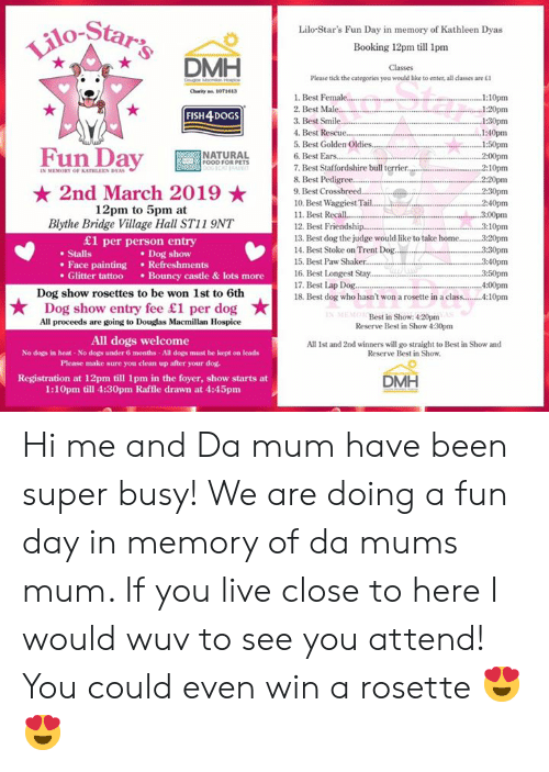 O-Star Lilo-Star's Fun Day in Memory of Kathleen Dyas