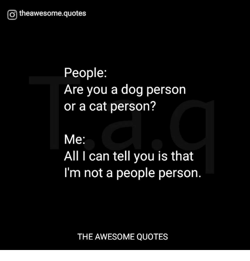 O Theawesomequotes People Are You A Dog Person Or A Cat Person Me