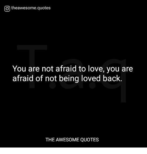 O Theawesomequotes You Are Not Afraid To Love You Are Afraid Of Not