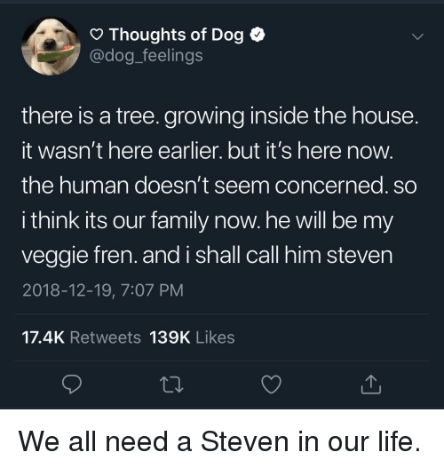 Family, Life, and House: O Thoughts of Dog <  @dog_feelings  there is a tree. growing inside the house  It wasn't here earlier. but it's here now  the human doesn't seem concerned. so  i think its our family now. he will be my  veggie fren. and i shall call him steven  2018-12-19, 7:07 PM  17.4K Retweets 139K Likes We all need a Steven in our life.