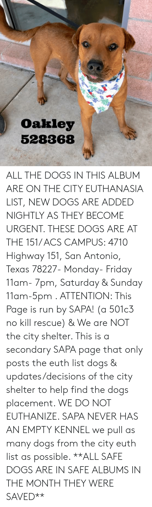 Dogs, Friday, and Memes: Oakley  528368 ALL THE DOGS IN THIS ALBUM ARE ON THE CITY EUTHANASIA LIST, NEW DOGS ARE ADDED NIGHTLY AS THEY BECOME URGENT.  THESE DOGS ARE AT THE 151/ ACS CAMPUS: 4710 Highway 151, San Antonio, Texas 78227- Monday- Friday 11am- 7pm, Saturday & Sunday 11am-5pm  .                                                                                                                                                                                                                                                     ATTENTION: This Page is run by SAPA! (a 501c3 no kill rescue) & We are NOT the city shelter. This is a secondary SAPA page that only posts the euth list dogs & updates/decisions of the city shelter to help find the dogs placement. WE DO NOT EUTHANIZE.  SAPA NEVER HAS AN EMPTY KENNEL we pull as many dogs from the city euth list as possible.      **ALL SAFE DOGS ARE IN SAFE ALBUMS IN THE MONTH THEY WERE SAVED**