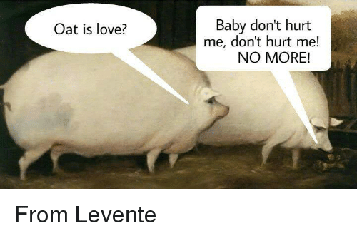 Oat Is Love Baby Dont Hurt Me Dont Hurt Me No More From Levente