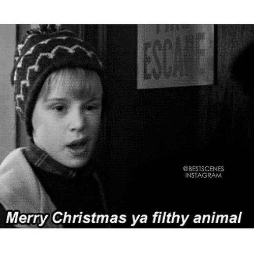 ✅ 25+ Best Memes About Merry Christmas Ya Filthy | Merry ...