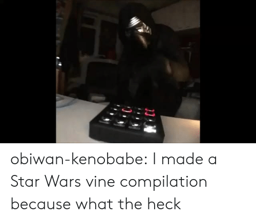 Star Wars, Tumblr, and Vine: obiwan-kenobabe: I made a Star Wars vine compilation because what the heck