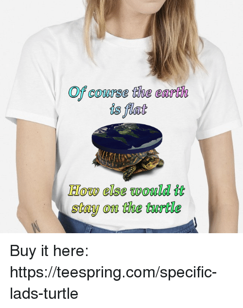Earth Turtle And Dank Memes Of Course The Is Flat How Else