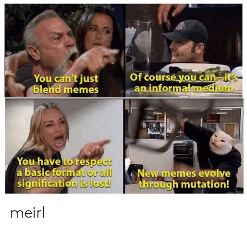Memes, Respect, and Lost: Of course you can it's  an informalmedium  You can't just  blend memes  You have to respect  a basic format or all  signification is lost!  New memes evolve  through mutation! meirl
