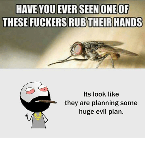 Memes, Evil, and 🤖: OF  THESE FUCKERS RUBTHEIR HANDS  Its look like  they are planning some  huge evil plan.