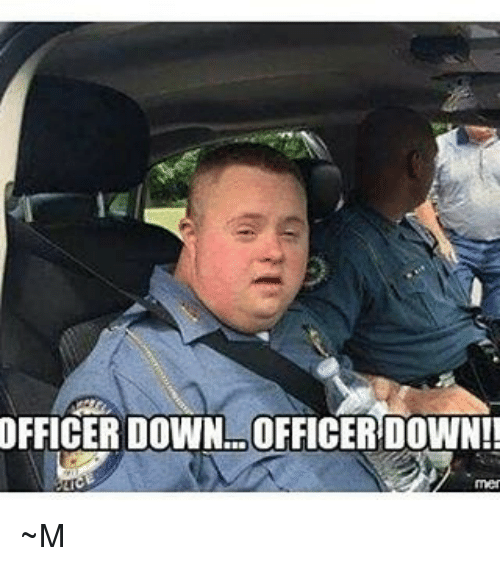 officer down officer down ~m 21647338 ✅ 25 best memes about public affairs public affairs memes,Down Down Meme