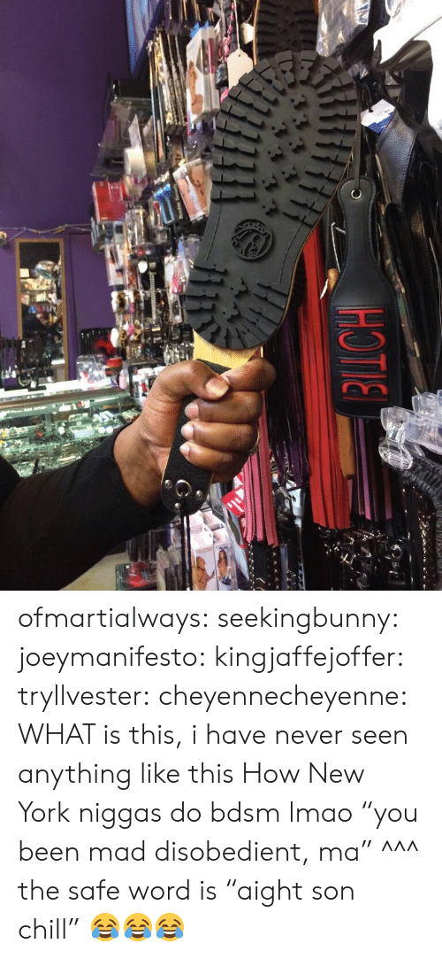 """Chill, Gif, and Lmao: ofmartialways:  seekingbunny:  joeymanifesto:   kingjaffejoffer:  tryllvester:  cheyennecheyenne:  WHAT is this, i have never seen anything like this  How New York niggas do bdsm  lmao """"you been mad disobedient, ma""""   ^^^ the safe word is """"aight son chill""""     😂😂😂"""