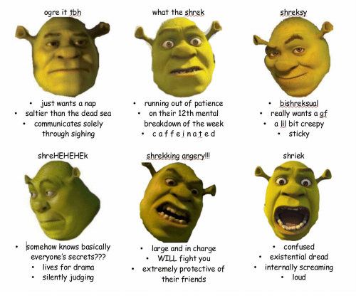 Ogre It Tbh Whaf Fhe Shrek Shreksy Running Out Of Patience On Their 12th Mental Breakdown Of The Week Caffeinate D Bishreksual Just Wants A Nap Saltier Than The Dead Sea Communicates