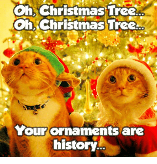 25+ Best Oh Christmas Tree Your Ornaments Are History Memes | Ornaments Memes, Awe Memes
