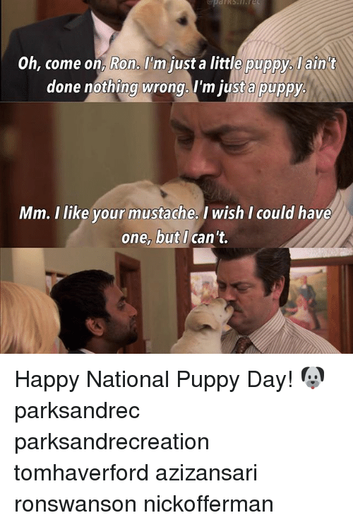 Memes, 🤖, and Done: Oh, come on, Ron, I'm justa little puppy. ain t  done nothing wrong. I'm justa puppy.  Mm. I like your mustache, I wish I could have  one, but I  can't. Happy National Puppy Day! 🐶 parksandrec parksandrecreation tomhaverford azizansari ronswanson nickofferman