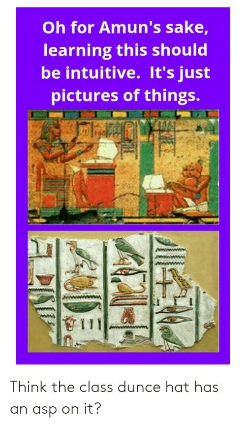 Pictures, Dunce, and Asp: Oh for Amun's sake,  learning this should  be intuitive. It's just  pictures of things. Think the class dunce hat has an asp on it?
