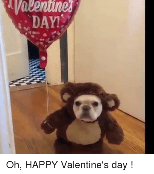 Memes, Valentine's Day, and Happy: Oh, HAPPY Valentine's day !