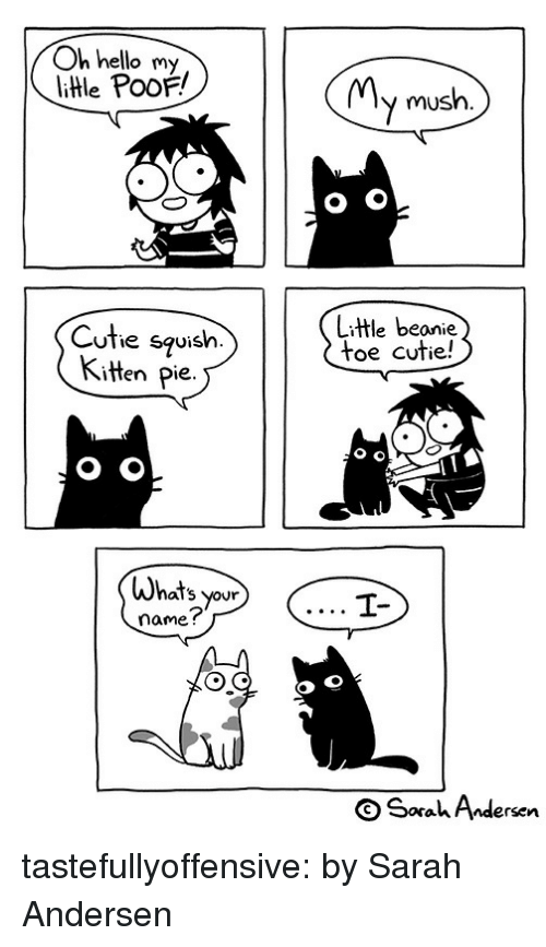 Hello, Target, and Tumblr: Oh hello my  litle PooF!  MMv mush.  Cuthe squish.  Kitten Pie.  Litle beanie  toe cutie!  Whats your  name?  OSaahAndersen tastefullyoffensive:  by Sarah Andersen