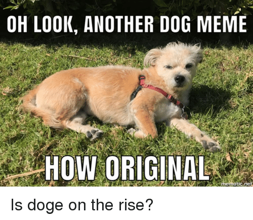 Doge Meme And How OH LOOK ANOTHER DOG MEME HOW ORIGINAL Mematicine