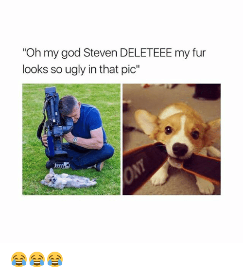 "God, Memes, and Oh My God: Oh my god Steven DELETEEE my fur  looks so ugly in that pic"" 😂😂😂"