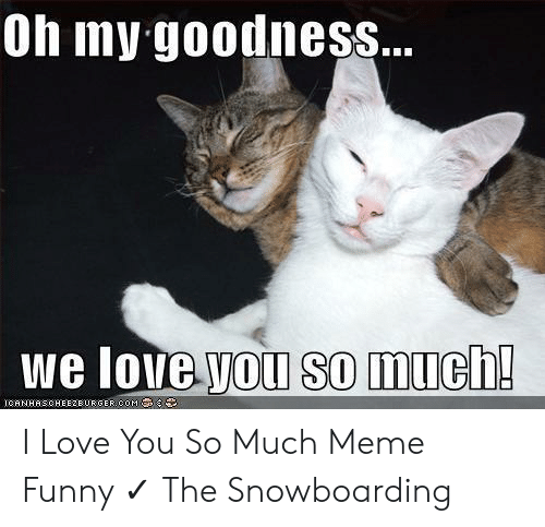 Funny, Love, and Meme: Oh my goodness...  we love you so much!  ICANHASCHEE2EURGER COM I Love You So Much Meme Funny ✓ The Snowboarding