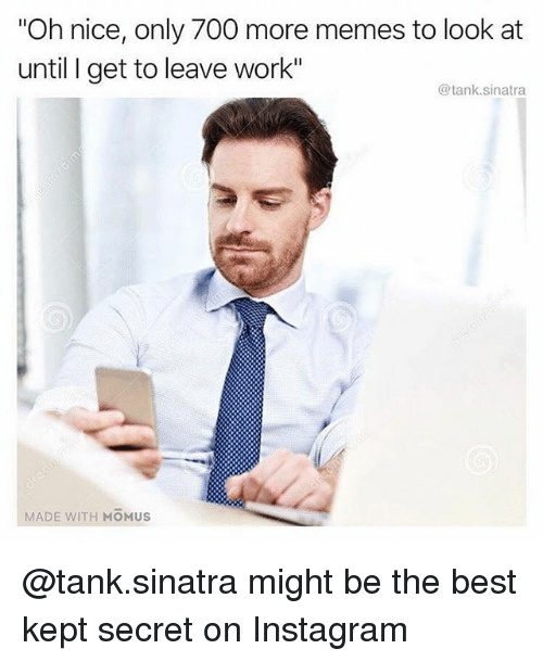 """Instagram, Memes, and Work: """"Oh nice, only 700 more memes to look at  until I get to leave work""""  @tank.sinatra  MADE WITH MOMUS @tank.sinatra might be the best kept secret on Instagram"""
