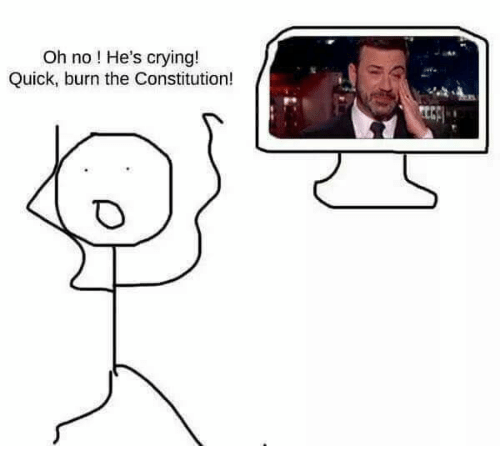 Crying, Memes, and Constitution: Oh no ! He's crying!  Quick, burn the Constitution!