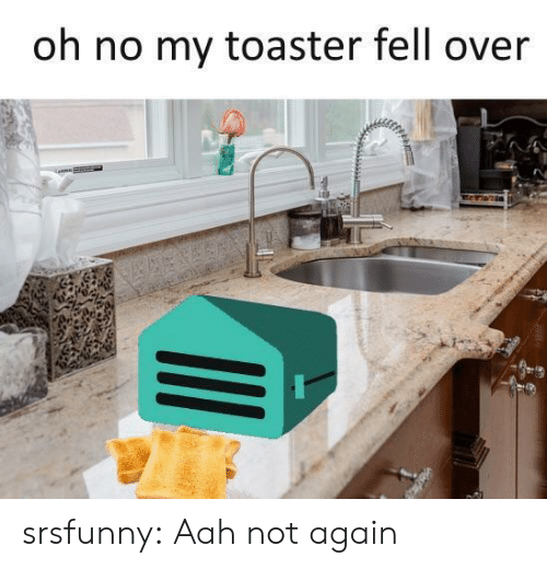 Tumblr, Blog, and Net: oh no my toaster fell over srsfunny:  Aah not again