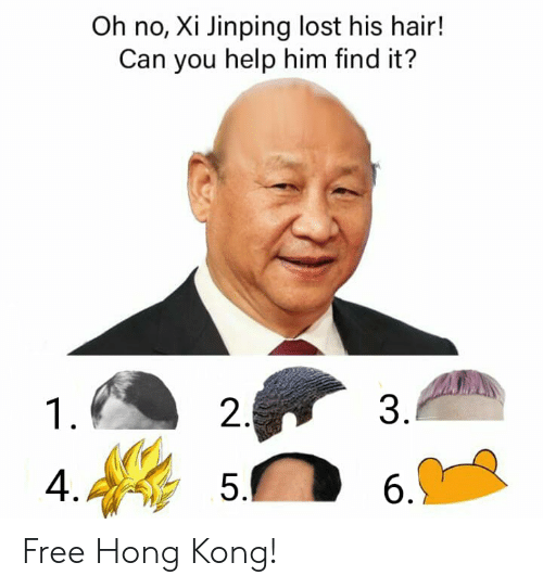 Lost, Free, and Hair: Oh no, Xi Jinping lost his hair!  Can you help him find it?  3.  2  1  4.  5.  6  ni Free Hong Kong!