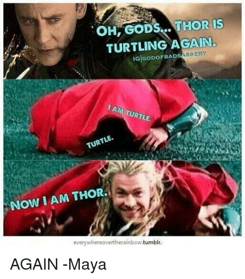 Oh Ods Thor Is Turtling Again Ig Godofbad Assery I Turtle Am Turtle
