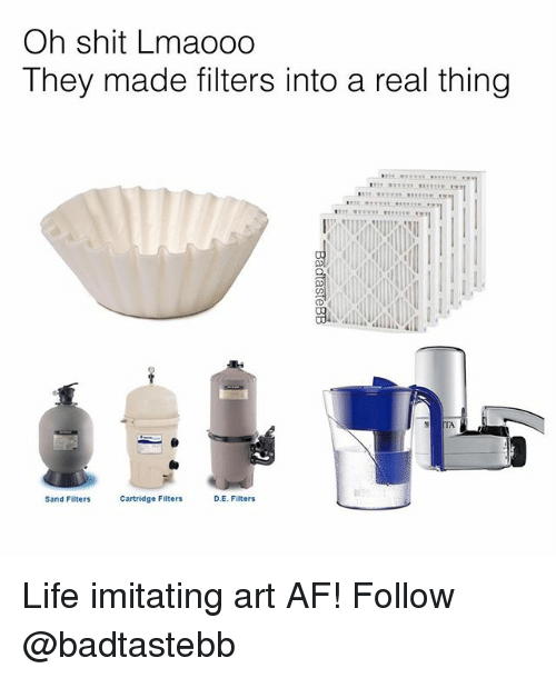 Af, Life, and Memes: Oh shit Lmaooo  They made filters into a real thing  TA  Sand Filters  Cartridge Filters  D.E. Filters Life imitating art AF! Follow @badtastebb