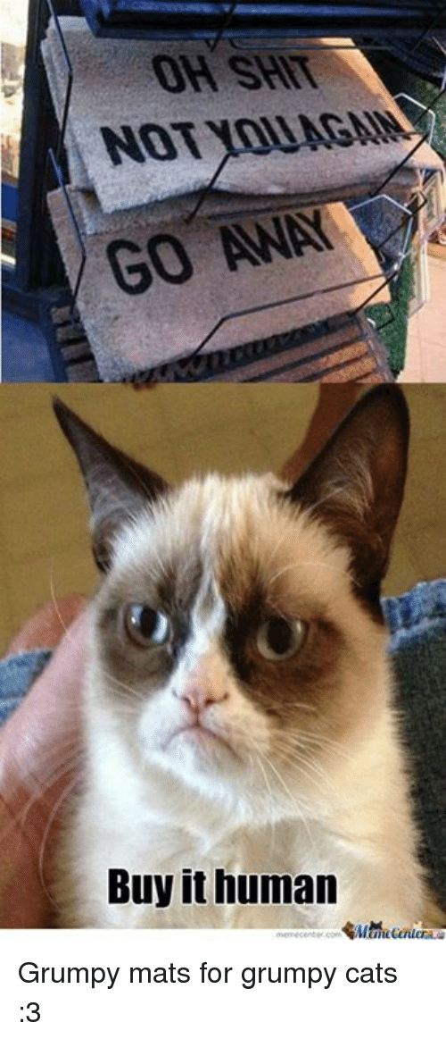 Cats, Memes, and Shit: OH SHIT  NOT YOU AGM  GO AWAY  Buy it human Grumpy mats for grumpy cats :3