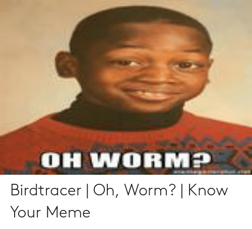 Oh Worm Know Your Meme | Asdela