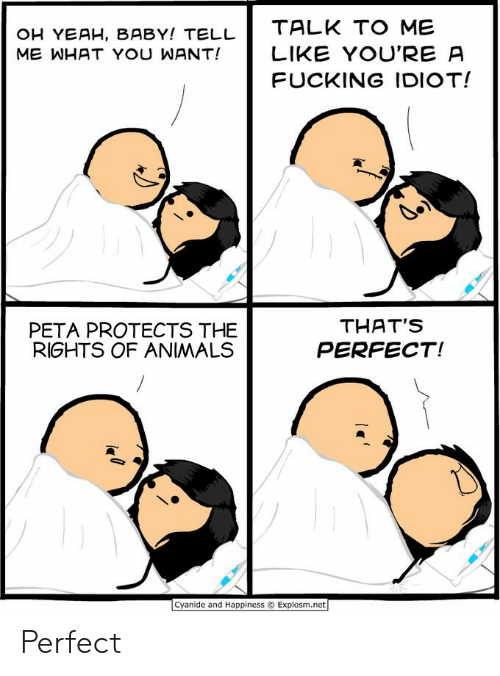 Animals, Fucking, and Yeah: OH YEAH, BABY! TELL  ME WHAT YOU WANT!  TALK TO ME  LIKE YOU'RE A  FUCKING IDIOT!  PETA PROTECTS THE  RIGHTS OF ANIMALS  THAT'S  PERFECT!  Cyanide and Happiness © Explosm.net Perfect