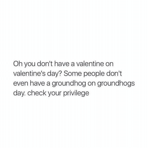 Groundhog Day, Girl Memes, and Groundhog: Oh you don't have a valentine on  valentine's day? Some people don't  even have a groundhog on groundhogs  day. check your privilege
