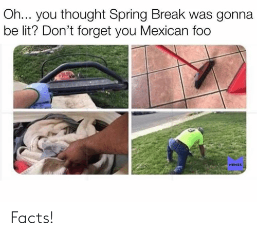 Facts, Lit, and Memes: Oh... you thought Spring Break was gonna  be lit? Don't forget you Mexican foo  MEMES Facts!