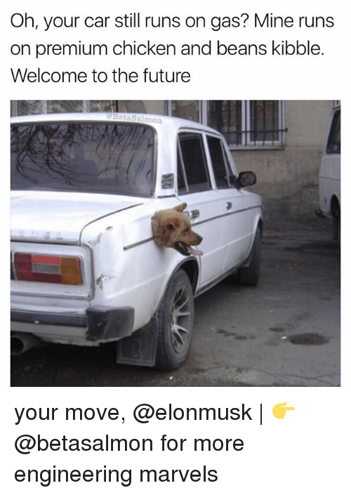 Future, Memes, and Chicken: Oh, your car still runs on gas? Mine runs  on premium chicken and beans kibble.  Welcome to the future  Salmon your move, @elonmusk | 👉 @betasalmon for more engineering marvels