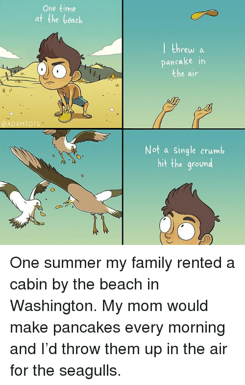 Family, Memes, and Summer: Ohe time  at the beach  threw a  pancake in  e air  単11  @ADAMTOTS  Not a single crumb  hit the ground One summer my family rented a cabin by the beach in Washington. My mom would make pancakes every morning and I'd throw them up in the air for the seagulls.