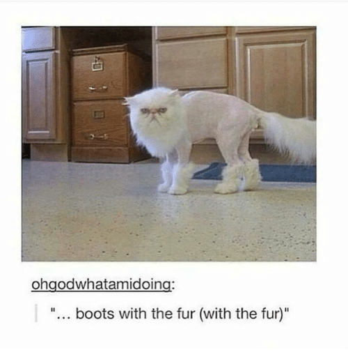 Ohgodwhatamidoing Boots With the Fur With the Fur