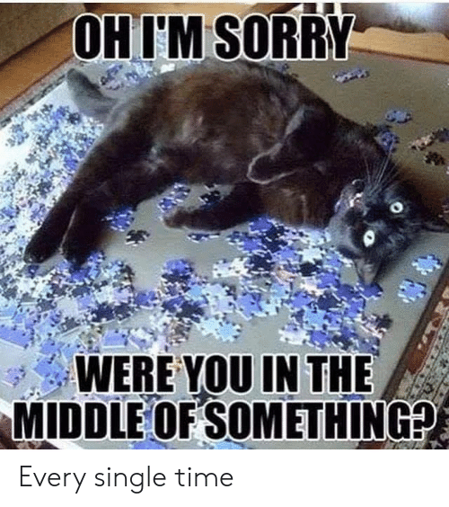 Memes, Sorry, and The Middle: OHIM SORRY  WERE YOU IN THE  MIDDLE OF SOMETHING? Every single time