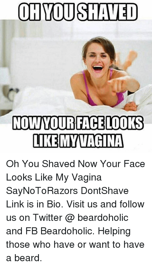 Ohyoushaved Nowyour Face Looks Like My Vagina Oh You Shaved Now Your