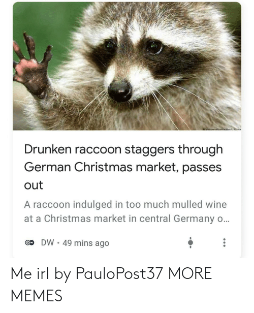 Christmas, Dank, and Memes: oictureNnwidoa/ Klime  Drunken raccoon staggers through  German Christmas market, passes  out  A raccoon indulged in too much mulled wine  at a Christmas market in central Germany o...  DW • 49 mins ago  Ow Me irl by PauloPost37 MORE MEMES