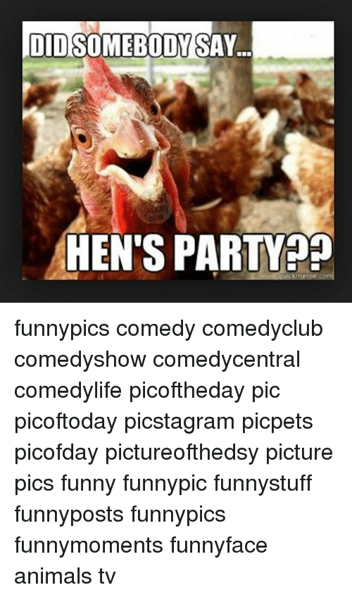 Memes And Hen Oidsomebody Say S Party Funnypics Comedy