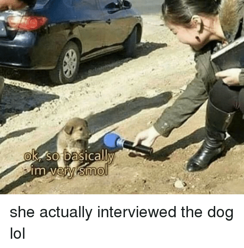 Lol, Dog, and She: OK SO basicallv she actually interviewed the dog lol
