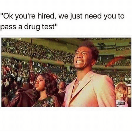 "Memes, Test, and Drug Test: ""Ok you're hired, we just need you to  pass a drug test"""