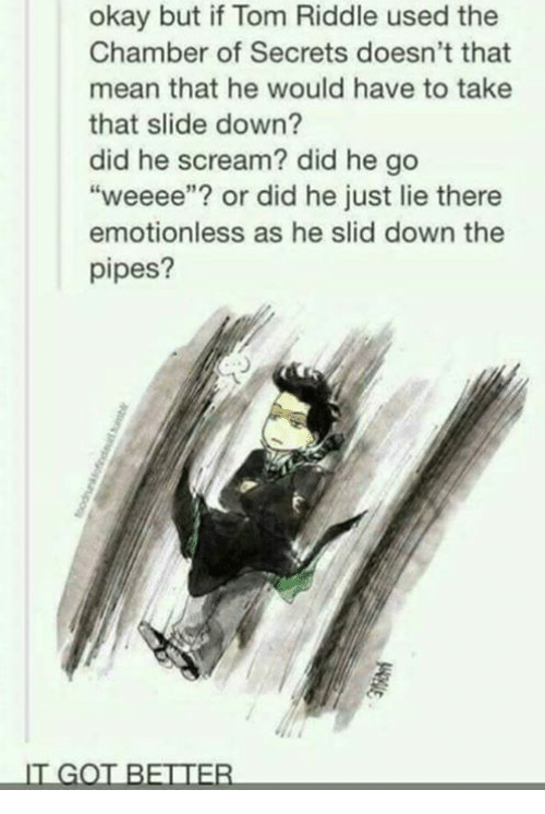 "Memes, Scream, and Mean: okay but if Tom Riddle used the  Chamber of Secrets doesn't that  mean that he would have to take  that slide down?  did he scream? did he go  ""weeee""? or did he just lie there  emotionless as he slid down the  pipes?  IT GOT BETTER"