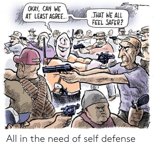 Politics, Okay, and Can: OKAY, CAN WE  AT LEAST AGREE THAT HE AL  FEEL SAFER? All in the need of self defense