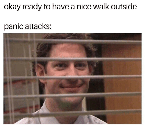 Okay, Nice, and Panic Attacks: okay ready to have a nice walk outside  panic attacks: