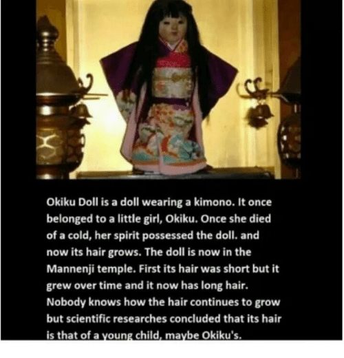 Girl, Hair, and Spirit: Okiku Doll is a doll wearing a kimono. It once  belonged to a little girl, Okiku. Once she died  of a cold, her spirit possessed the doll. and  now its hair grows. The doll is now in the  Mannenji temple. First its hair was short but it  grew over time and it now has long hair.  Nobody knows how the hair continues to grow  but scientific researches concluded that its hair  is that of a voung child, maybe Okiku's