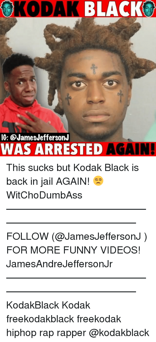 Funny, Jail, and Memes: OKODAK BLACKO  IG: @JamesJeffersonJ  WAS ARRESTED  AGAIN! This sucks but Kodak Black is back in jail AGAIN! 😒 WitChoDumbAss ——————————————————————————— FOLLOW (@JamesJeffersonJ ) FOR MORE FUNNY VIDEOS! JamesAndreJeffersonJr ——————————————————————————— KodakBlack Kodak freekodakblack freekodak hiphop rap rapper @kodakblack