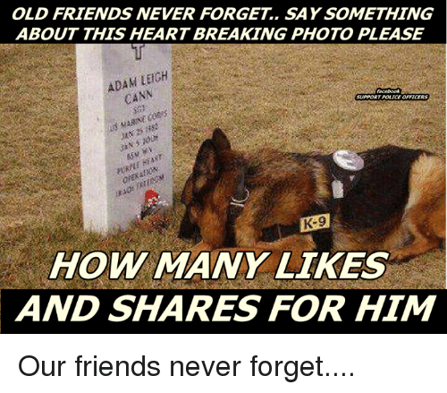 Memes, 🤖, and Cannes: OLD FRIENDS NEVER FORGET. SAY SOMETHING  ABOUT THIS HEARTBREAKING PHOTO PLEASE  ADAM LEIGH  CANN  Facebook  HOW MANY LIKES  AND SHARES FOR HIM Our friends never forget....